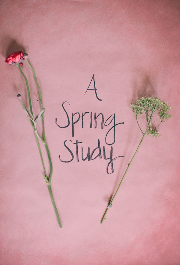 a-spring-study-4