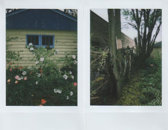 instax-garden